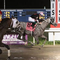 EvD Horse Racing Results