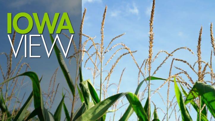 Iowa view