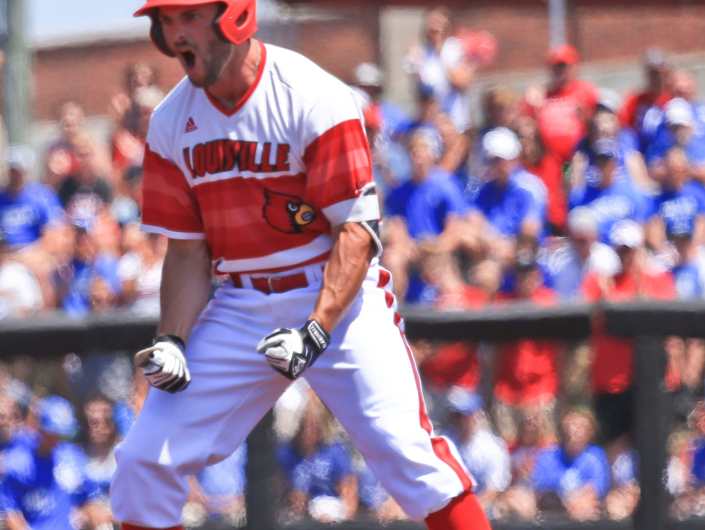 Louisville's Logan Taylor roars after hitting a double early against Kentucky in the Super Regional Friday. Taylor had one hit at three at-bats, with two runs scored.The Cards won 5-2 over the Wildcats.