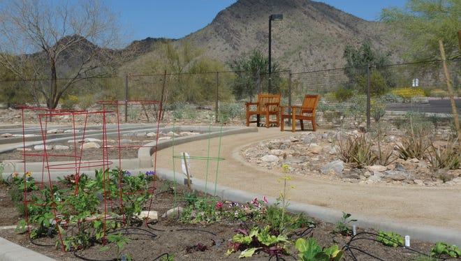 DC Ranch's new community garden is at  Copper Ridge School.