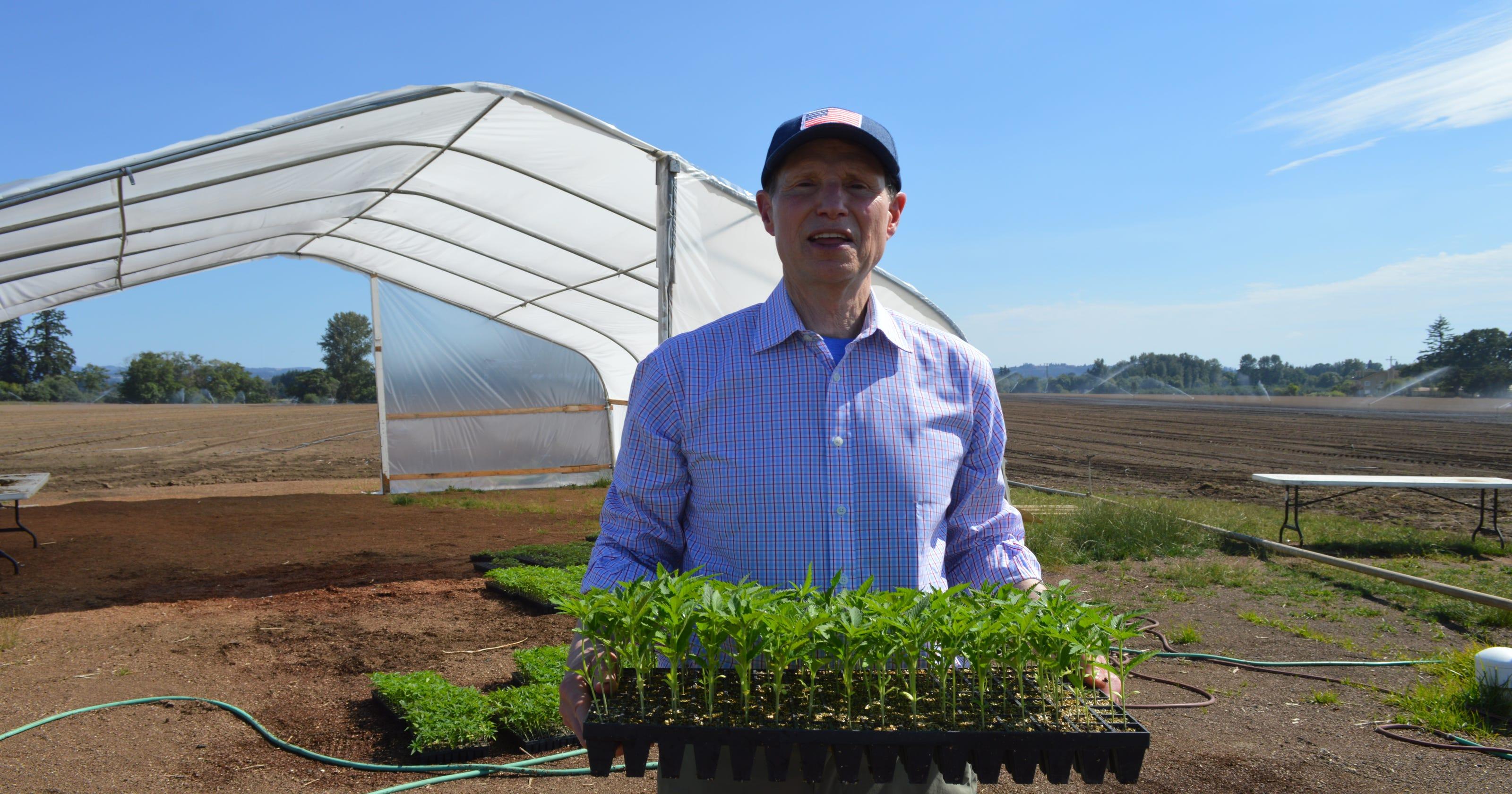 United States farm bill latest news   News   Video   EBL News