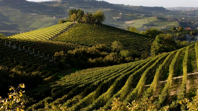 The Vietti winery is in Italy's Piemonte region, or Piedmont as it's known in English.