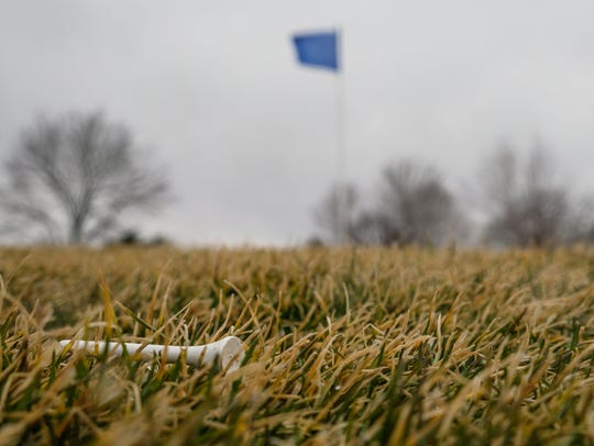 A golf tee lays near a putting green at Rackham Golf