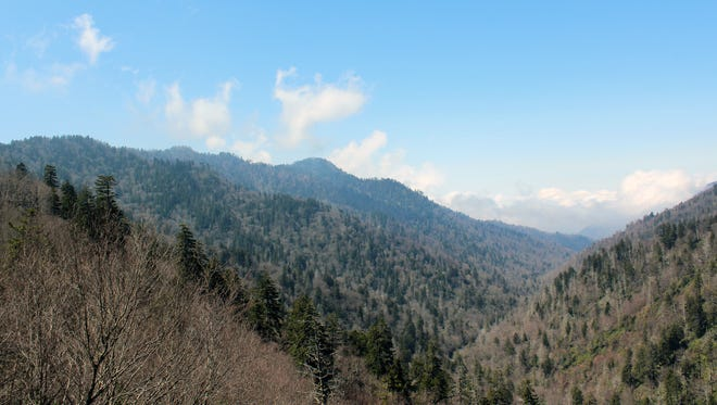 Gorgeous vistas can be seen at Newfound Gap, which is roughly at the road's halfway point and marks the state line.