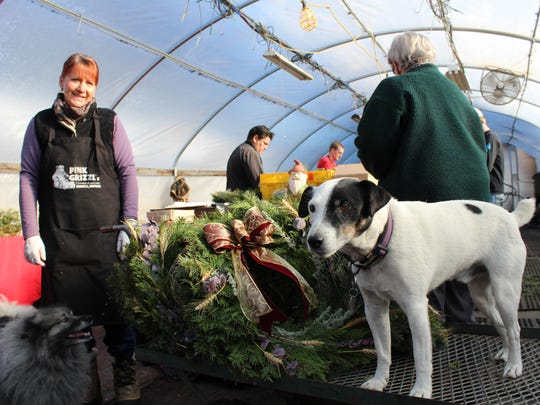 Lynn Clouse watches while two of the family dogs oversee the Christmas-wreath making operation at the Pink Grizzly Greenhouse in Missoula