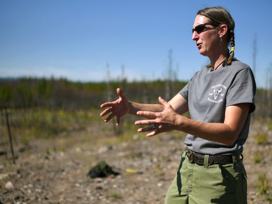 In a July 22, 2018 photo, Yellowstone National Park ecologist Becky Smith speaks during a tour of the 1988 burn scar, an area that burned again in 2016 during the Maple fire. (Rachel Leathe/Bozeman Daily Chronicle via AP)