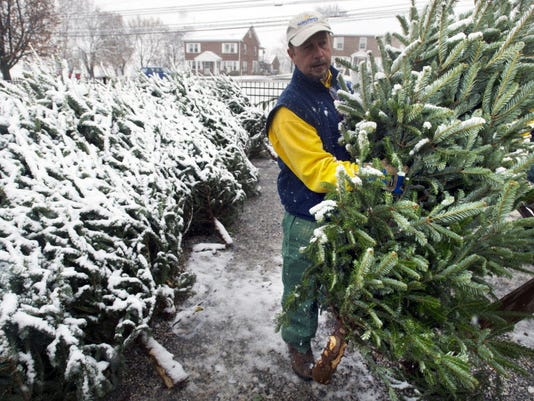 Jim Bowers arranged holiday trees at Stauffers of Kissel Hill in Dover Township along Route 74 last month. So far, December has been warm -- about 7.1 degrees above normal, according to AccuWeather.com. Photo by Paul Kuehnel of the York Daily Record/Sunday News.