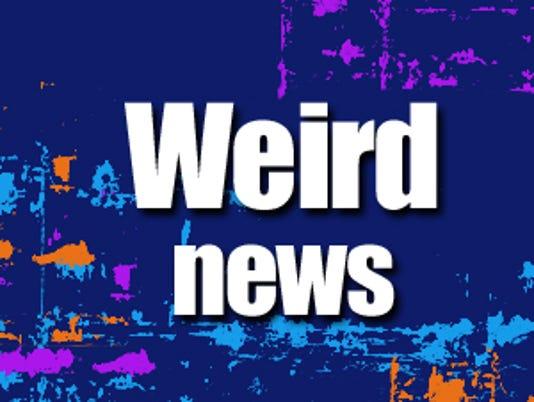 Odd news logo
