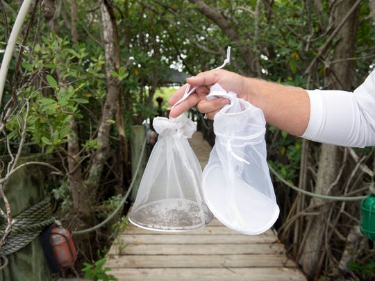 Scott Artman, St. Lucie County Mosquito Control inspection foreman, holds up a used and new bag from a mosquito trap Wednesday, August 31, 2016 on North Hutchinson Island. Traps are a natural way to reduce the population of adult mosquitos.