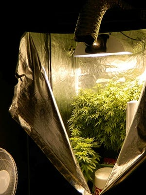 Growing station shown in the residence of Jon Ryan Temple, 32, of Mansfield, arrested Thursday on multiple drug charges after a school resource officer smelled marijuana on the backpacks of juvenicles living there.