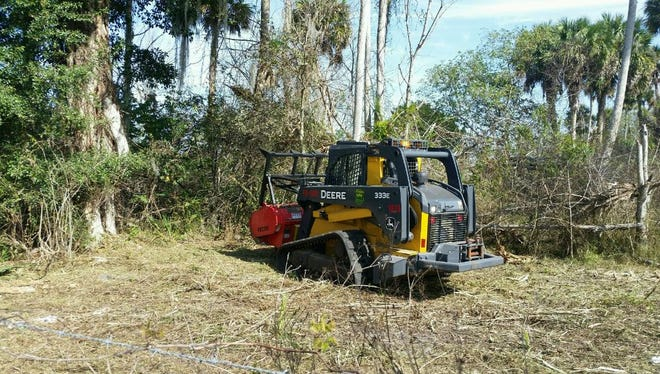 Florida Forest Service is clearing areas with high vegetation to reduce the threat of brush fires.