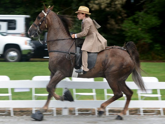 The Eagleville Country Horse Show is set for 5 p.m. Saturday at the Eagleville Show Grounds, 747 Chapel Hill Pike. The show benefits the Eagleville Community Center. Admission is $5 for adults, $2 for childre ages 5 to 12, and ages 4 and younger are admitted free. For questions, call 615-473-9578. Rain date is Aug. 20.