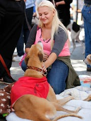 Aria Pedersen of Brownsville pets a greyhound dog at the Heart Bound Greyhound Adoption booth during Fondue Fest in downtown Fond du Lac Saturday afternoon. Saturday September 12, 2015.