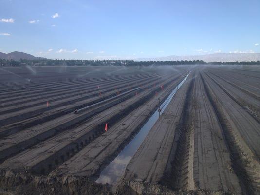 Farm watering_Coachella Valley