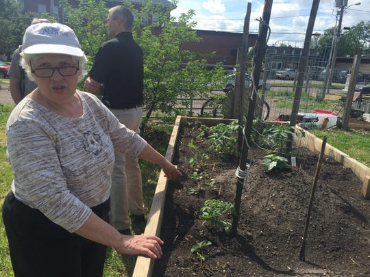 Aloyse Rowley shows off her tomato and cucumber plants in her raised garden bed in the Archibald Neighborhood Garden on Thursday, June 11, 2015.