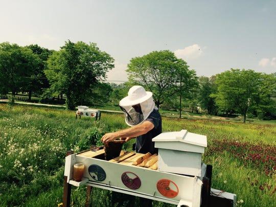 Beekeeper Michael Schmaeling works in the field at the Rodale Institute's Honeybee Conservancy in Kutztown, Pa.