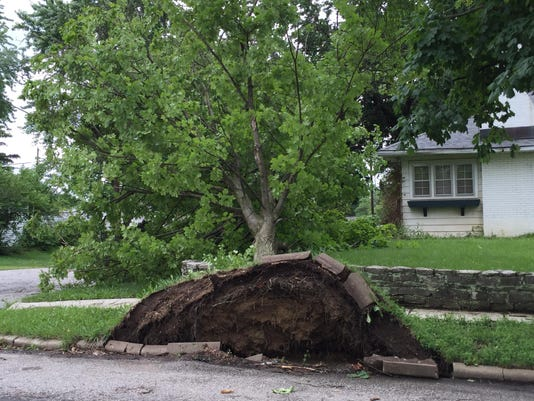 storm cleanup photo