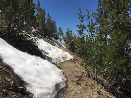 There are still patches of snow on the trail to Relay Peak, which reaches about 10,300 feet in elevation.