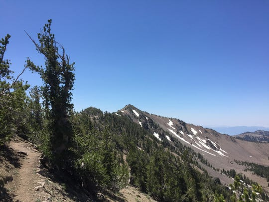 The final stretch on a recent hike to Relay Peak.