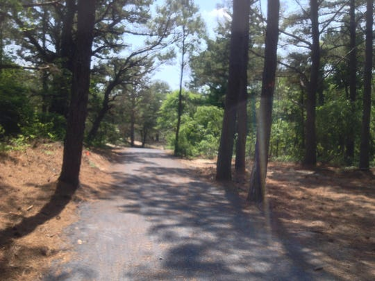 The Gordons Pond Bike Trail winds through a coastal maritime forest.