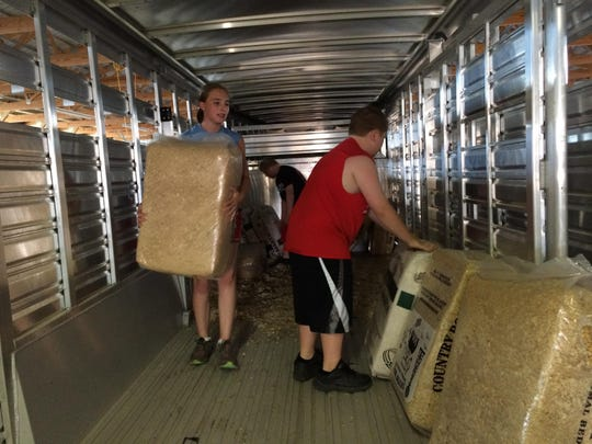 Chloe LaCrosse and Ross (back) and Riley Phillips move shavings out of a cattle trailer that their cattle will lay on while at the Door County Fair.