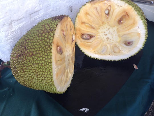 jackfruit halved