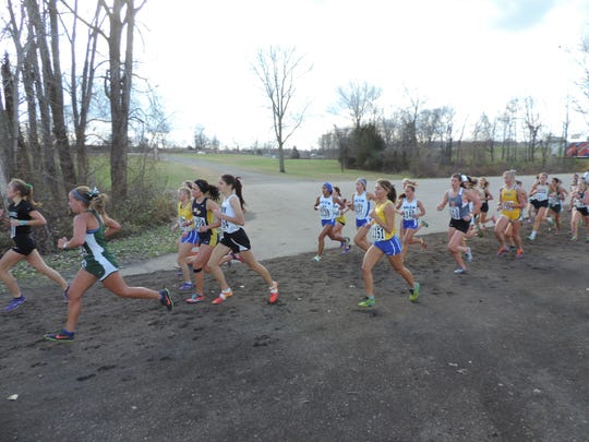 Salem runners (center) stay in a pack during Saturday's Division 1 girls cross country final at Michigan International Speedway in Brooklyn.