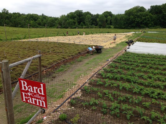 Bard Farm