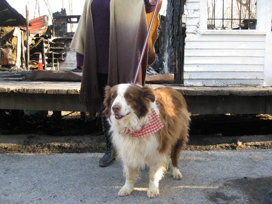 Rabbit Hash mayor, Lucy Lou, stands in front of the