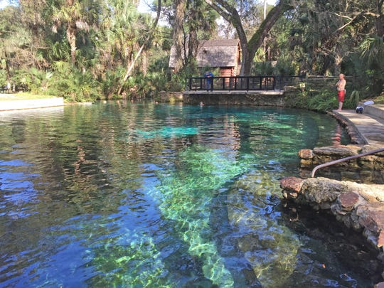 Juniper Springs in the Ocala National Forest is where the vibrant turquoise blue headspring, surrounded by a swimming hole, historic millhouse and picnic area begins the Juniper Run.