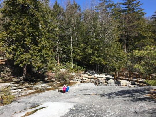 Minnewaska-Blueberry Run-Mossy Glen Trail Junction by Amber Ray