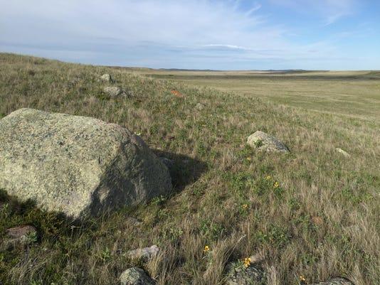 carroll grasslandfix