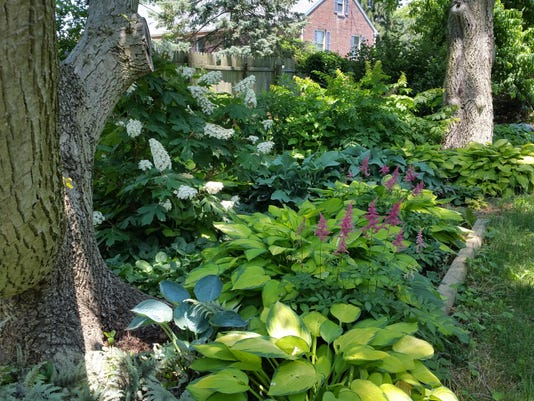Gardening For Shade Work Area Raises More Than Hostas