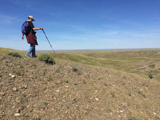 Jeanne Dussault descends a ridge during a hike on the prairie west on Bureau of Land Management property west of Glasgow.
