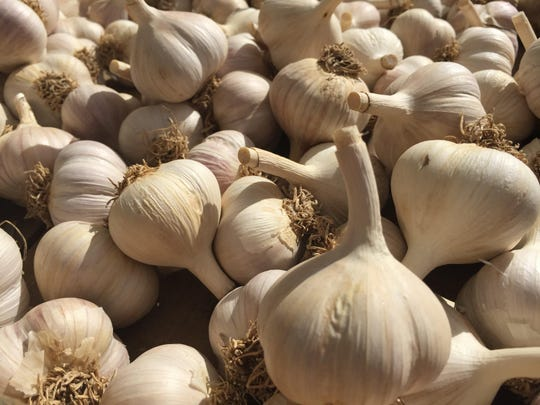 The South Florida Garlic Festival is Feb. 8-10 in Lake Worth.