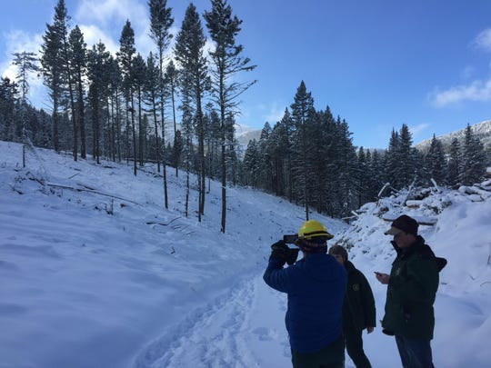 Forest Service Bill Avey snaps a photo of an area that had been opened up due to a thinning project.