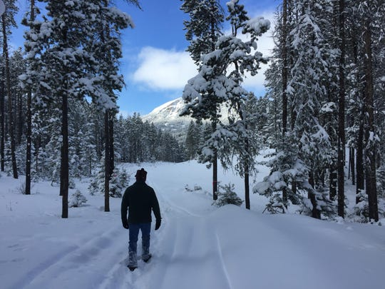 Mike Munoz, district ranger of the Rocky Mountain Ranger District, walks to an area where logging is occurring to reduce the risk of fire to 48 cabins, a few lodges, campgrounds and administrative sites used by the Forest Service. The corridor includes continuous and decadent fuels.