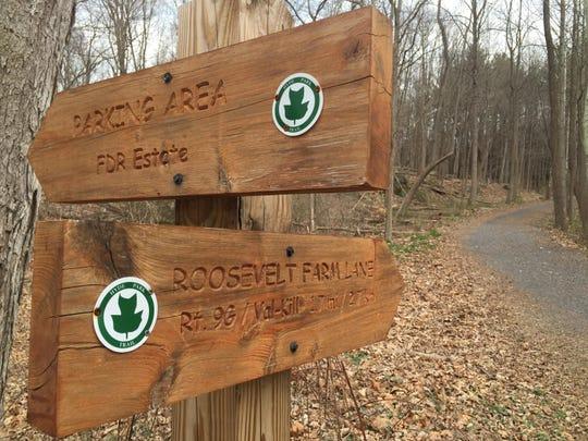 Hyde Park Trail 2