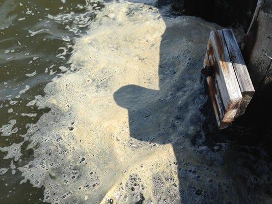 Foam in Barnegat Bay along Berkeley Island County Park