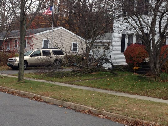 Limbs from trees cut down by Wayne Brunette are strew on the front lawn on Randy Lane following the Nov. 6, 2013 fatal shooting.