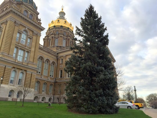 This 65-foot blue spruce tree outside the Iowa Capitol is still draped with Christmas lights.