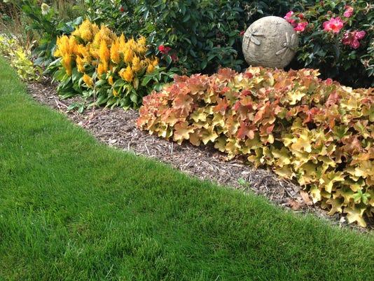 APC yard md fall lawn tips LEAD.JPG