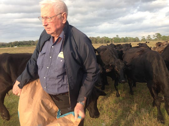 Jim English feeds cattle cubes to a herd of young Brangus in one of the family's Alva pastures.