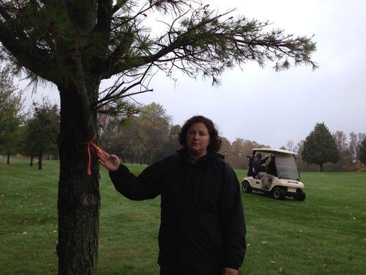-DCA 1018 pen park trees1.JPG_20141017.jpg