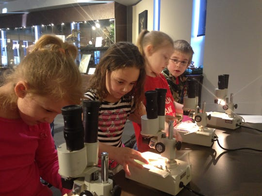 Kindergarten students from Garfield Elementary School examine specimens at the stereoscope station while on a field trip to St. Clair County Community College's Nasr Science Museum.