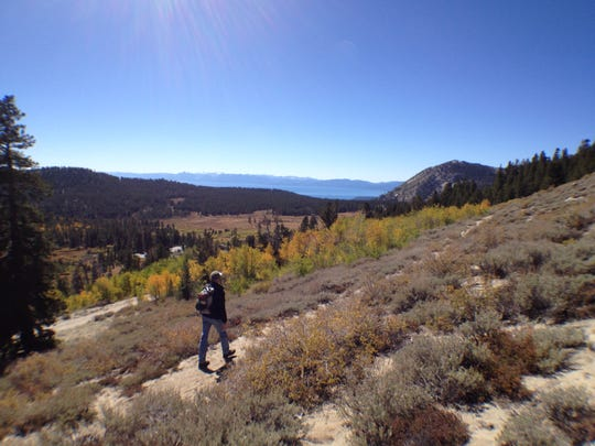 Fall color on the loop around Tamarack Peak overlooking Lake Tahoe.