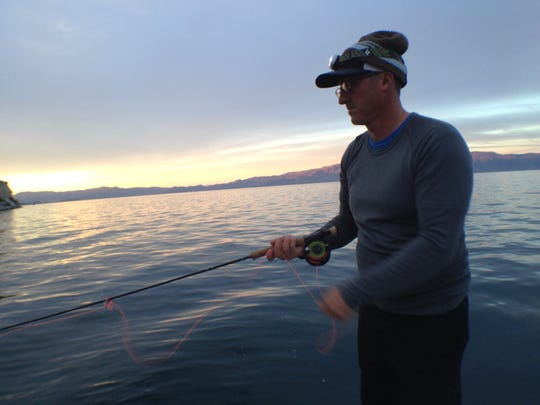 Joe Kulikowski of Reno fly fishing Pyramid Lake at sunrise on a recnt morning. The trout were active before dawn and for about an hour after sunrise before the action dropped off.