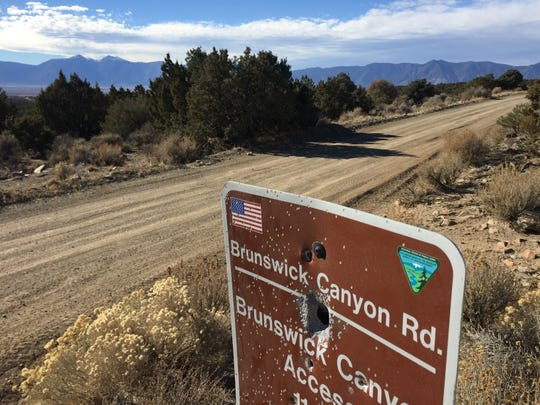 Want to cut your own holiday tree in Nevada? There are lots to choose from in Douglas County along Sunrise Pass and Brunswick Canyon roads.