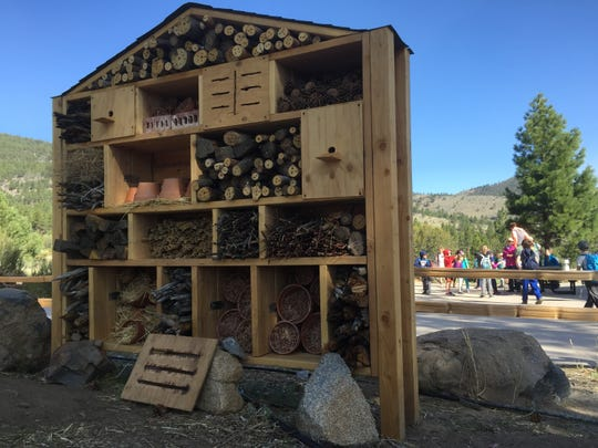 This 'bee hotel' at the Galena Creek Visitors Center is an attempt to provide a pesticide-free haven for bees, bugs and other pollinators which are critical to a functional environment in the Sierra Nevada and Great Basin.