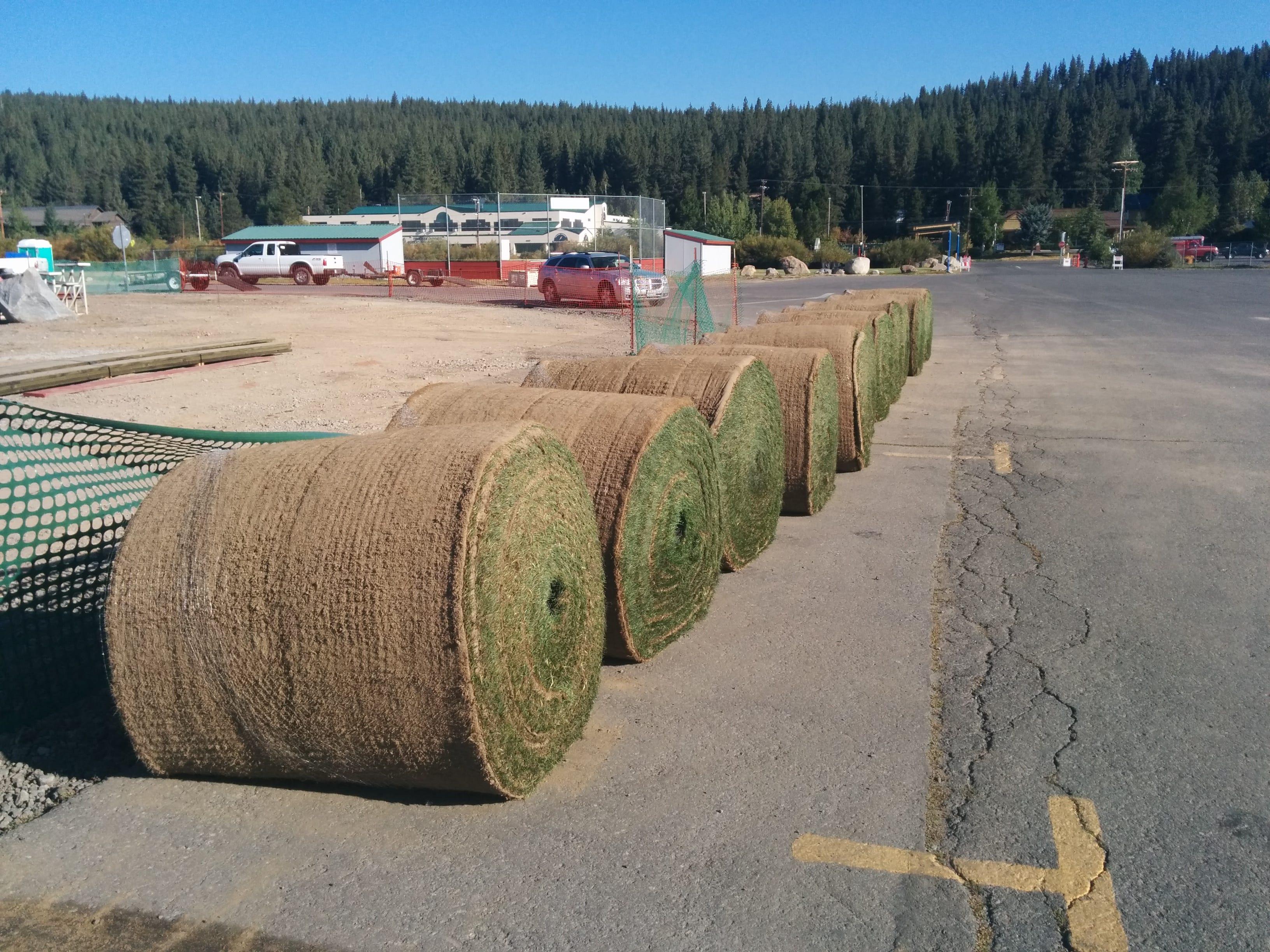 Rolls of sod for the Truckee baseball field.
